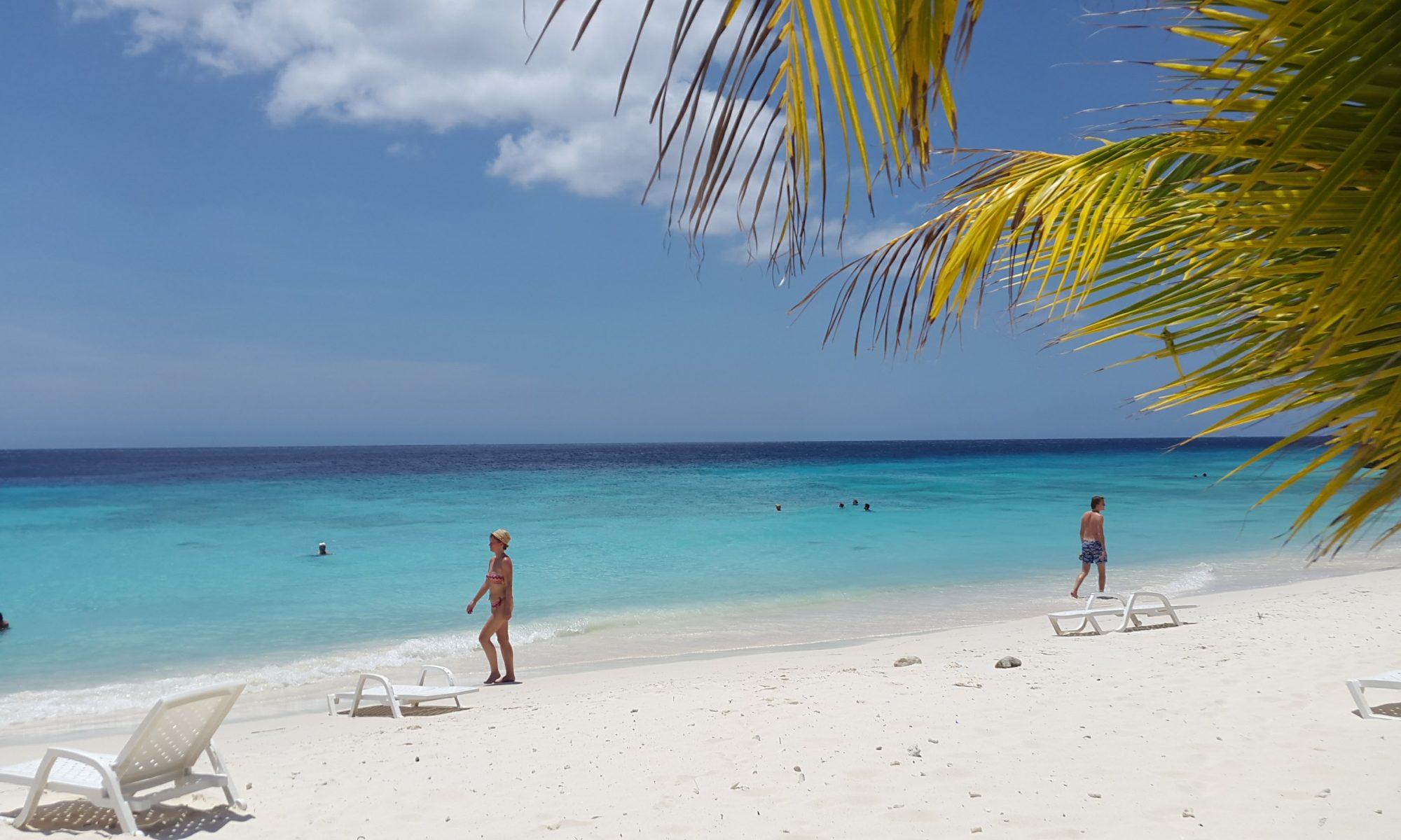 Scuba diving in Curacao