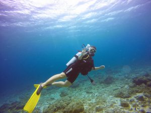 Enjoy Booking Dive Trip